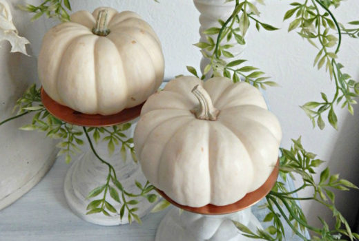 Fall Decor Mini White Pumpkins