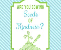 Seeds of Kindness Survey